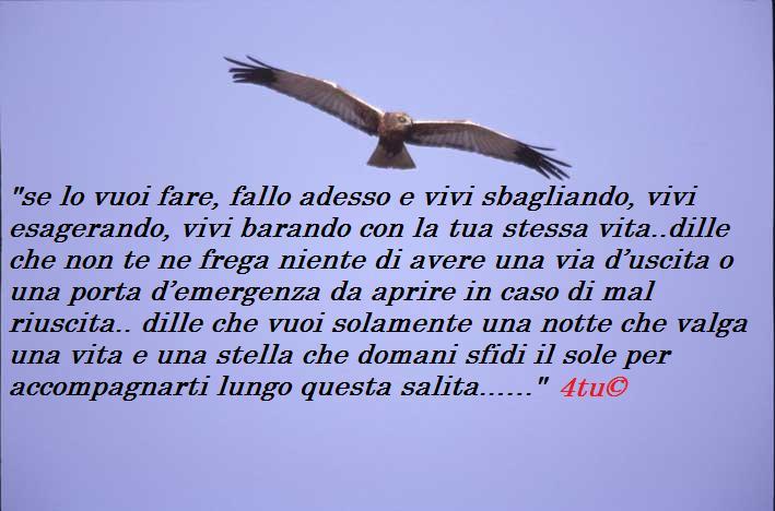 Preferenza Frasi Sulla Lealtà In Amore WS31 » Regardsdefemmes RR38