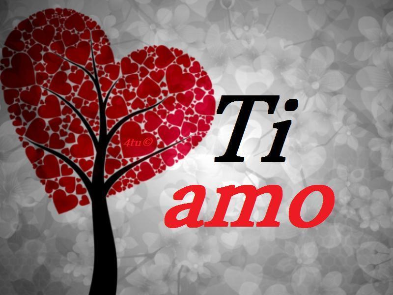 belle frasi d amore  Amore